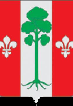 Coat_of_Arms_of_Barvichinskoe_municipal_division