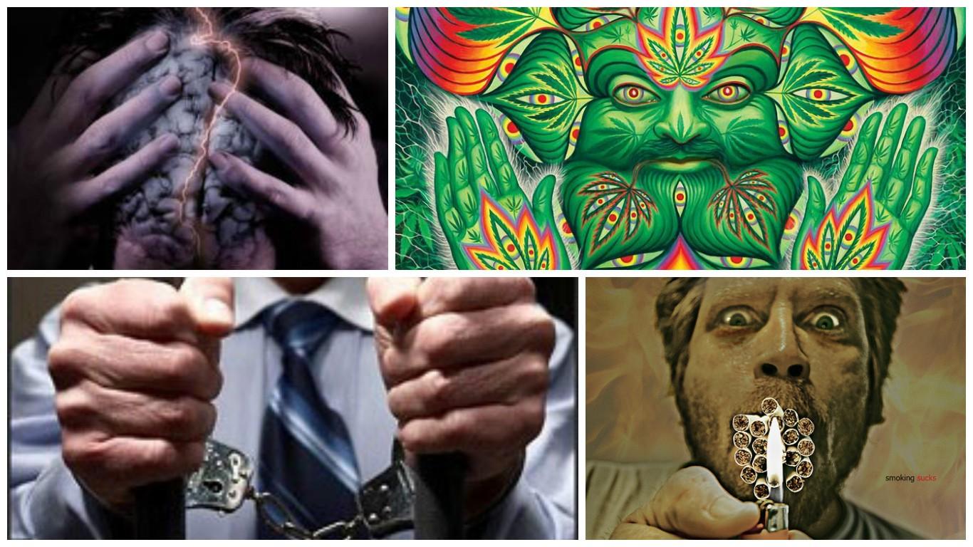 Последствия употребления марихуану конопля на каком месте
