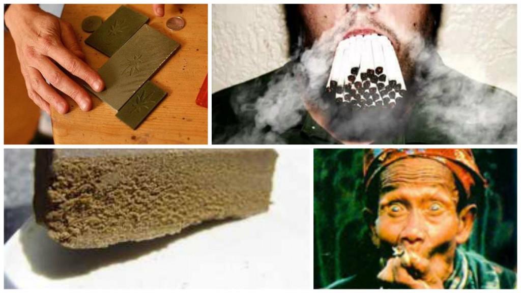 Если курить часто коноплю выращиванию марихуаны